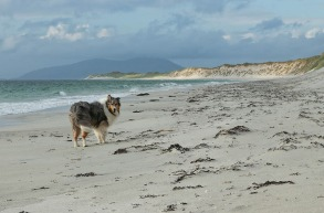Poldi_Strand_Berneray